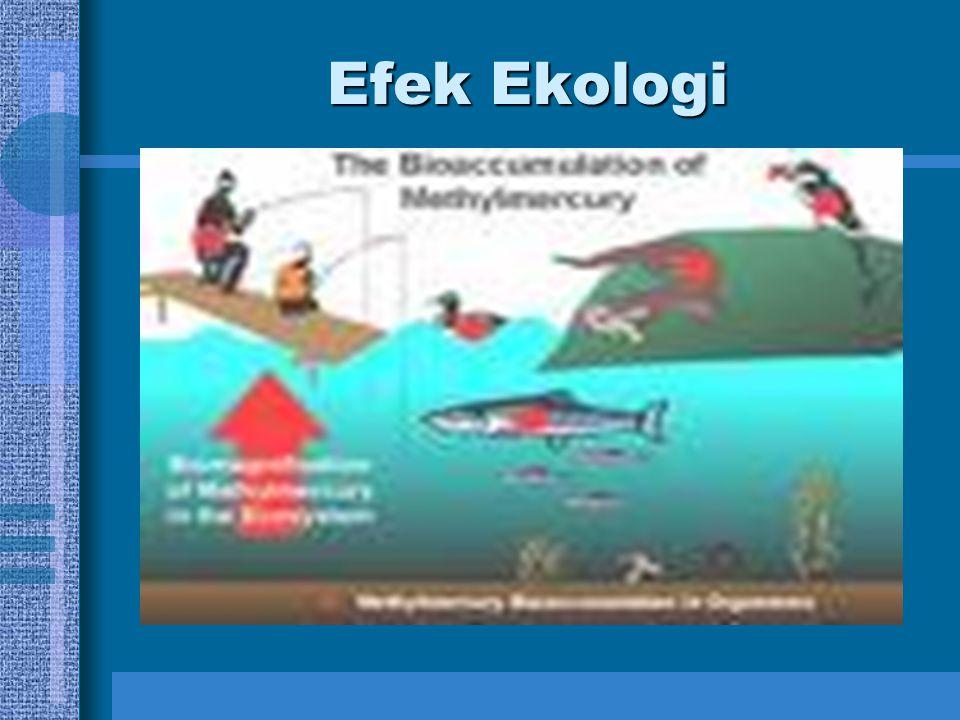 Efek Ekologi