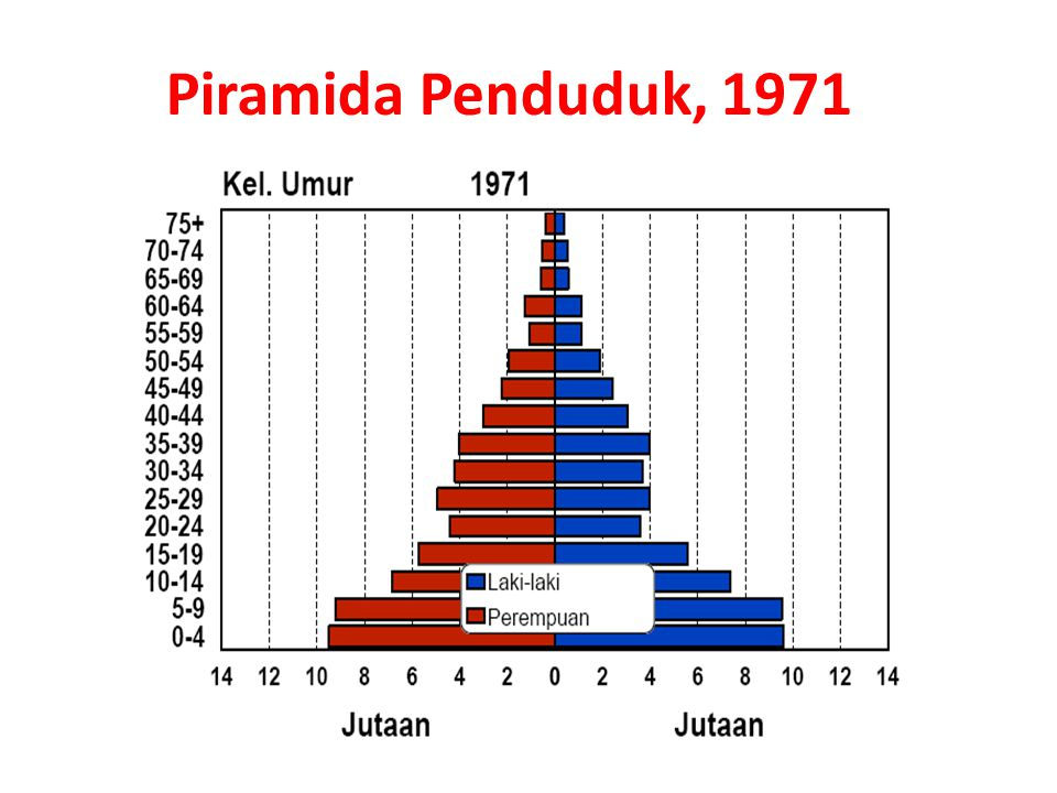 Piramida Penduduk, 1971 15