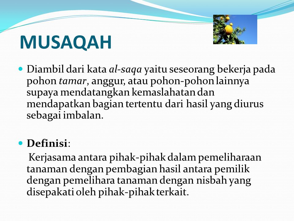 MUSAQAH