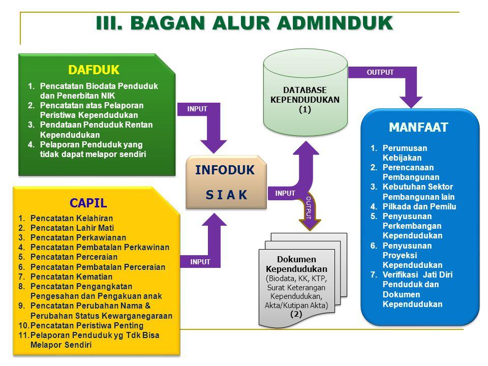 III. BAGAN ALUR ADMINDUK