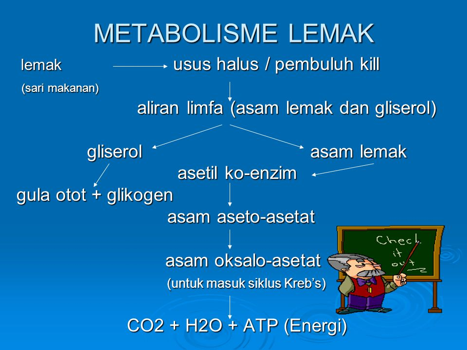 METABOLISME LEMAK (sari makanan)