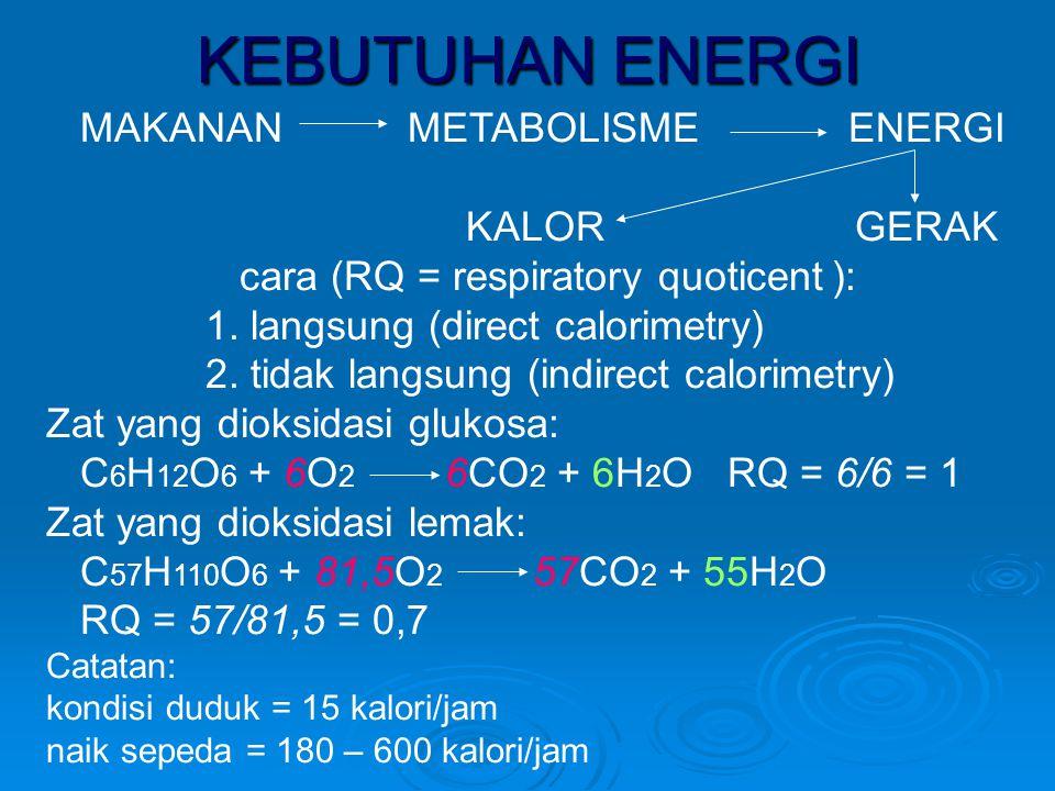 KEBUTUHAN ENERGI MAKANAN METABOLISME ENERGI KALOR GERAK