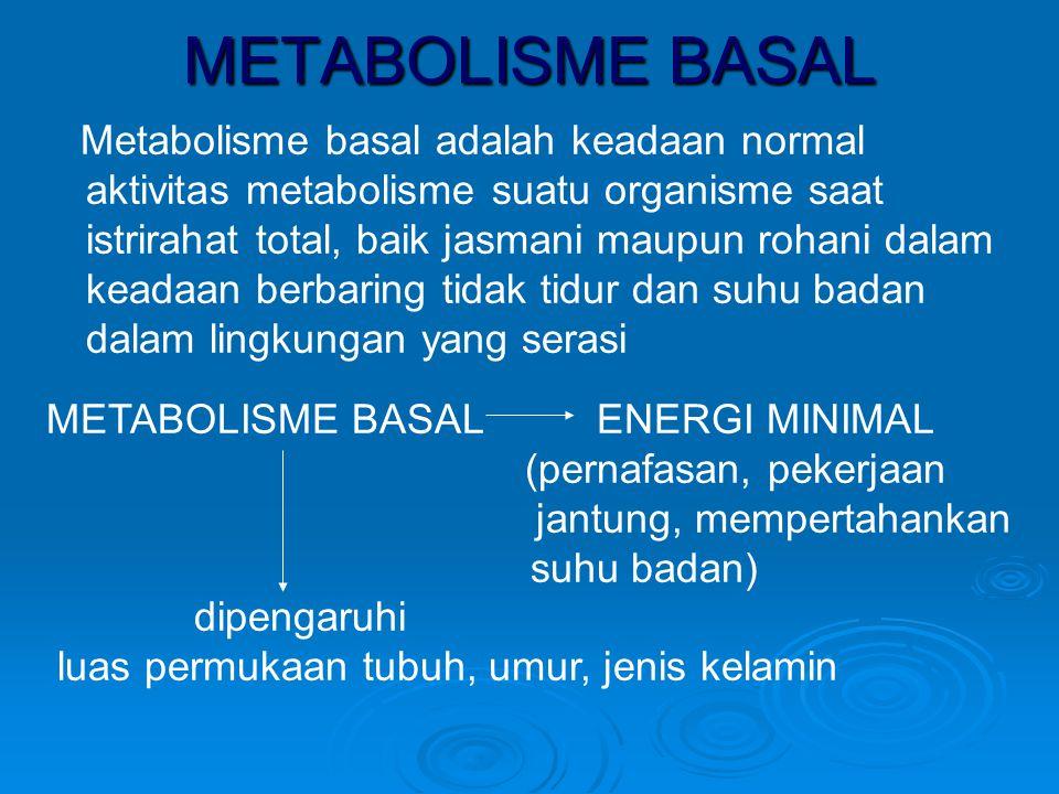 METABOLISME BASAL