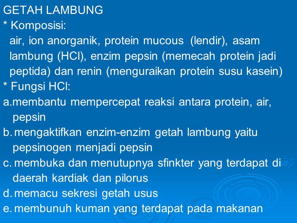 GETAH LAMBUNG * Komposisi: air, ion anorganik, protein mucous (lendir), asam. lambung (HCl), enzim pepsin (memecah protein jadi.