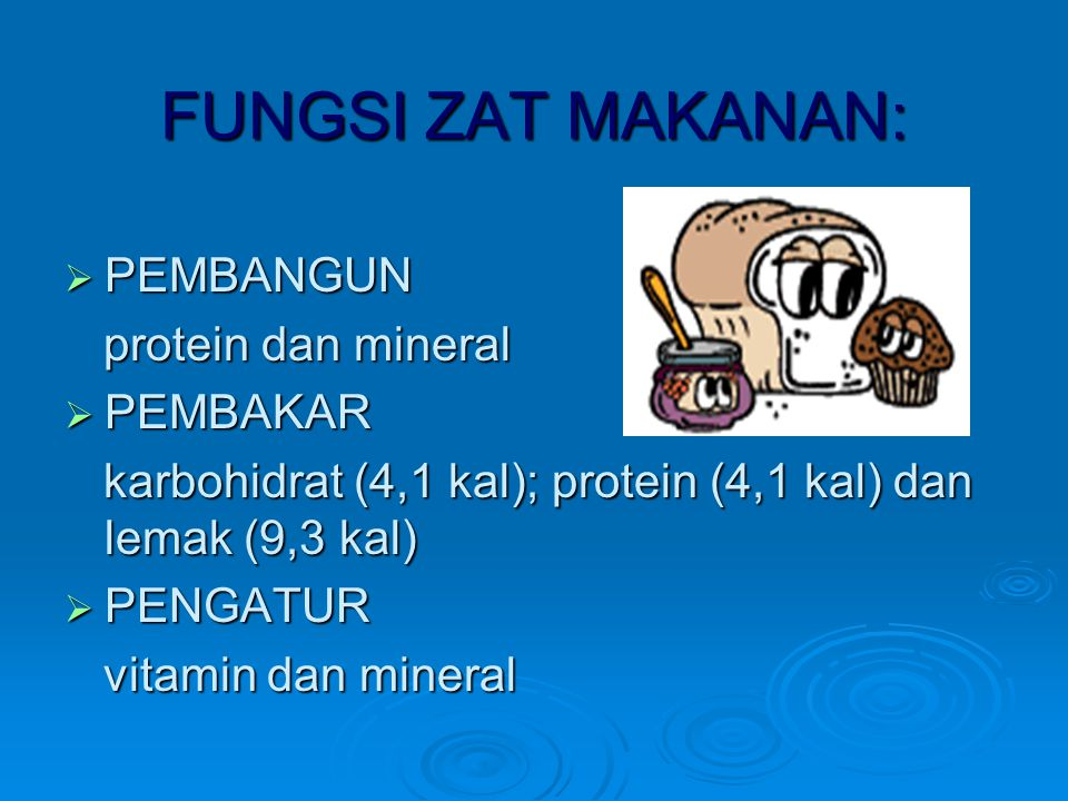 FUNGSI ZAT MAKANAN: PEMBANGUN protein dan mineral PEMBAKAR