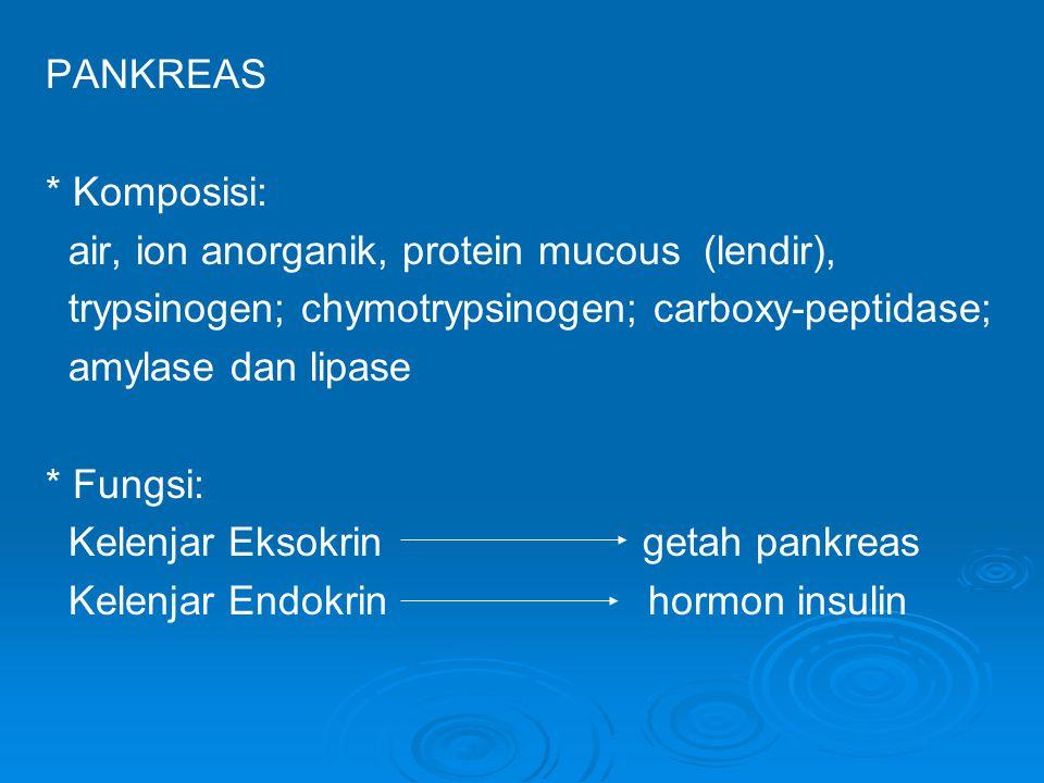PANKREAS * Komposisi: air, ion anorganik, protein mucous (lendir), trypsinogen; chymotrypsinogen; carboxy-peptidase;