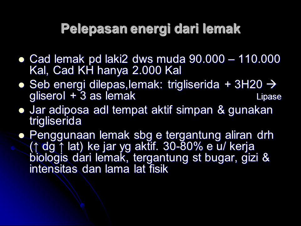 Pelepasan energi dari lemak