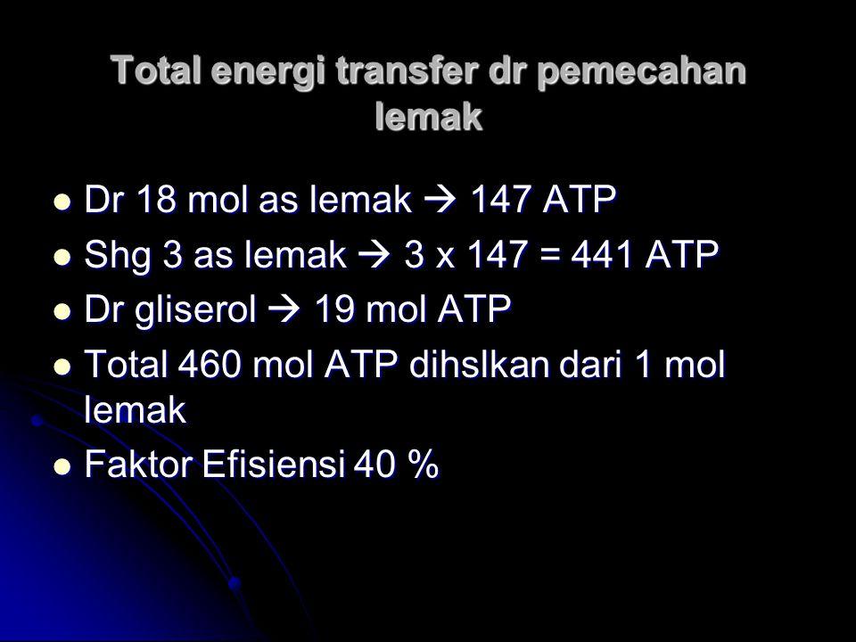 Total energi transfer dr pemecahan lemak