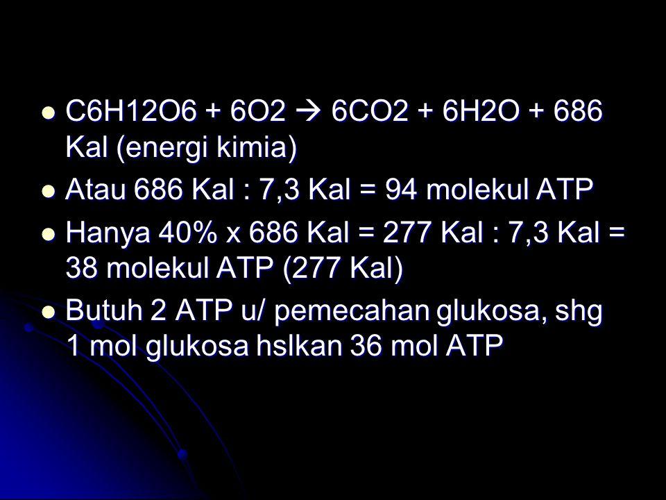 C6H12O6 + 6O2  6CO2 + 6H2O + 686 Kal (energi kimia)