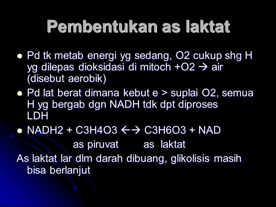 Pembentukan as laktat Pd tk metab energi yg sedang, O2 cukup shg H yg dilepas dioksidasi di mitoch +O2  air (disebut aerobik)