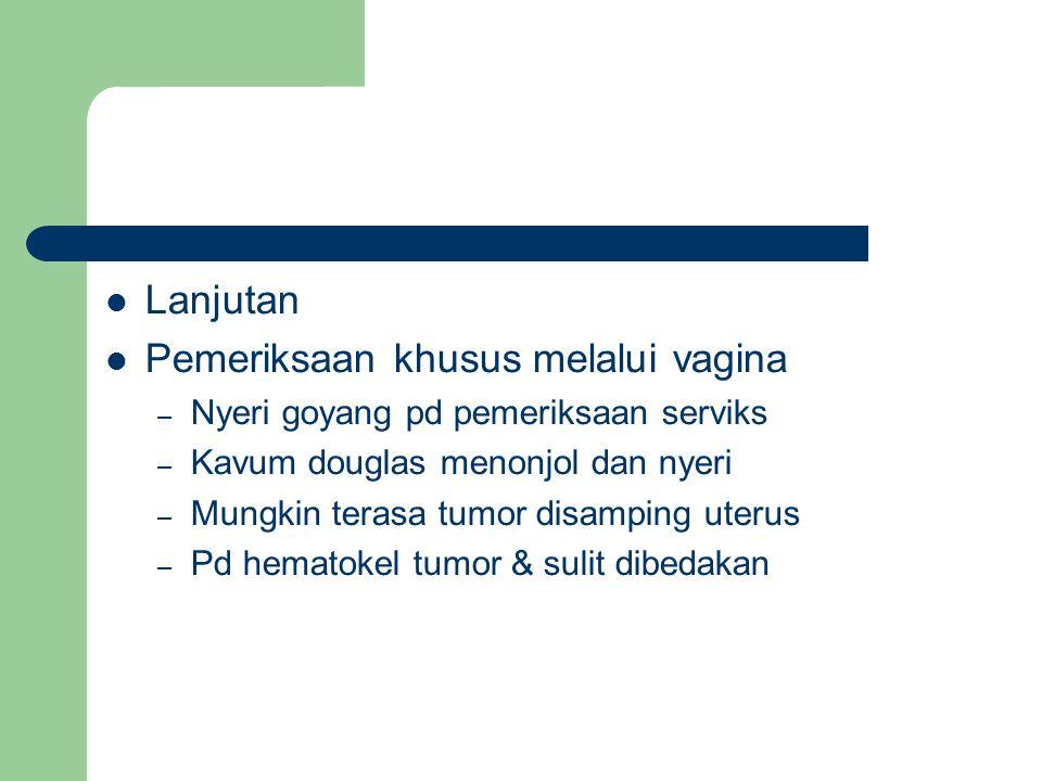 Pemeriksaan khusus melalui vagina