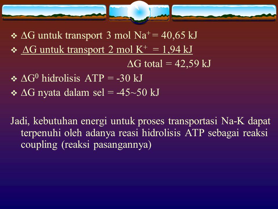 G untuk transport 3 mol Na+ = 40,65 kJ