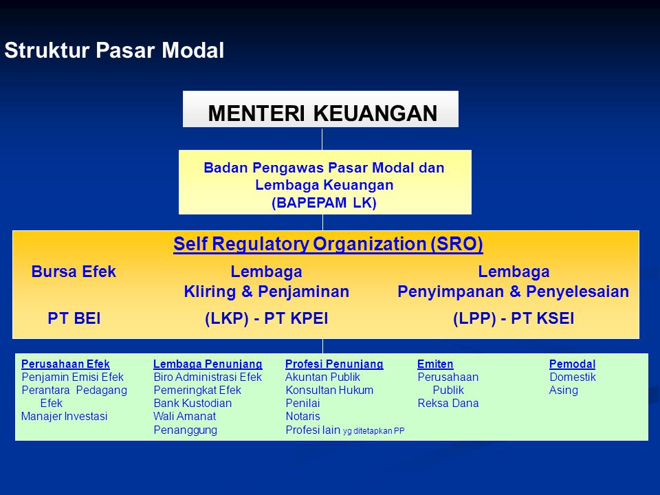 Struktur Pasar Modal MENTERI KEUANGAN