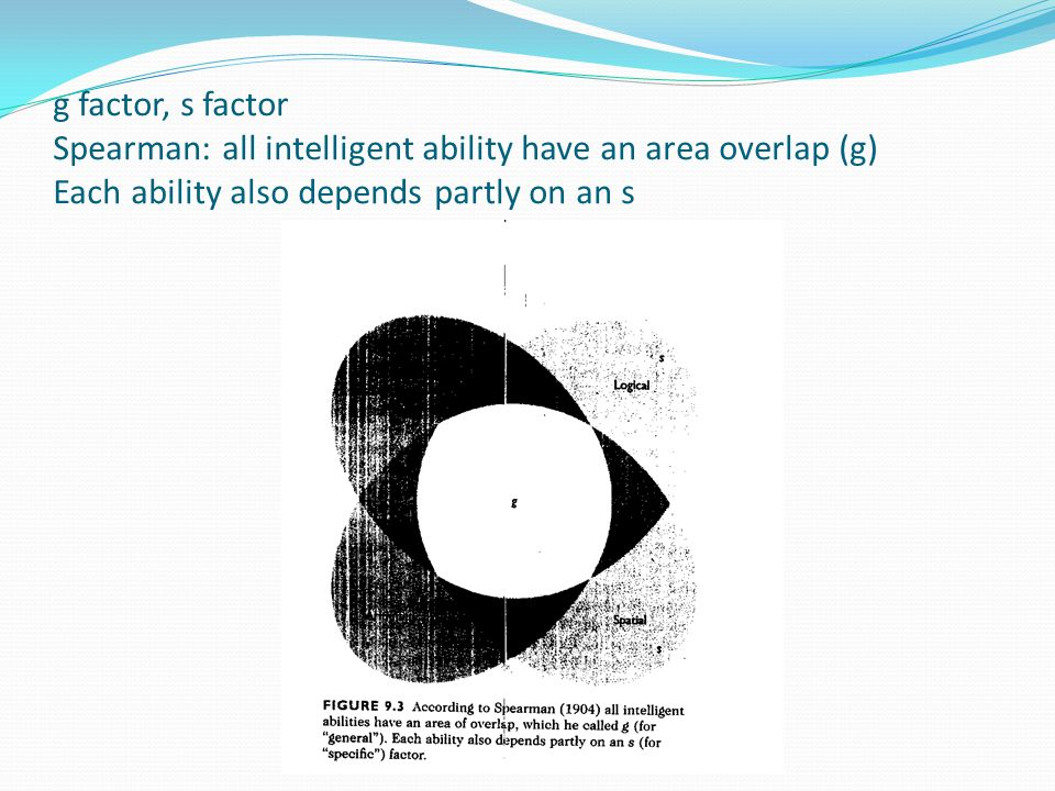 g factor, s factor Spearman: all intelligent ability have an area overlap (g) Each ability also depends partly on an s