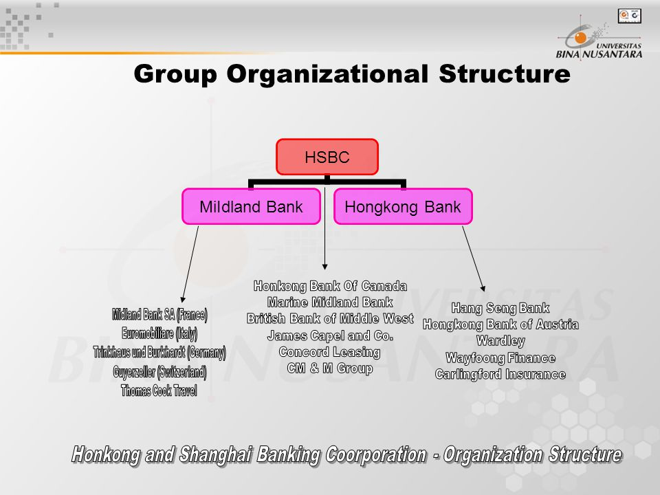 Group Organizational Structure