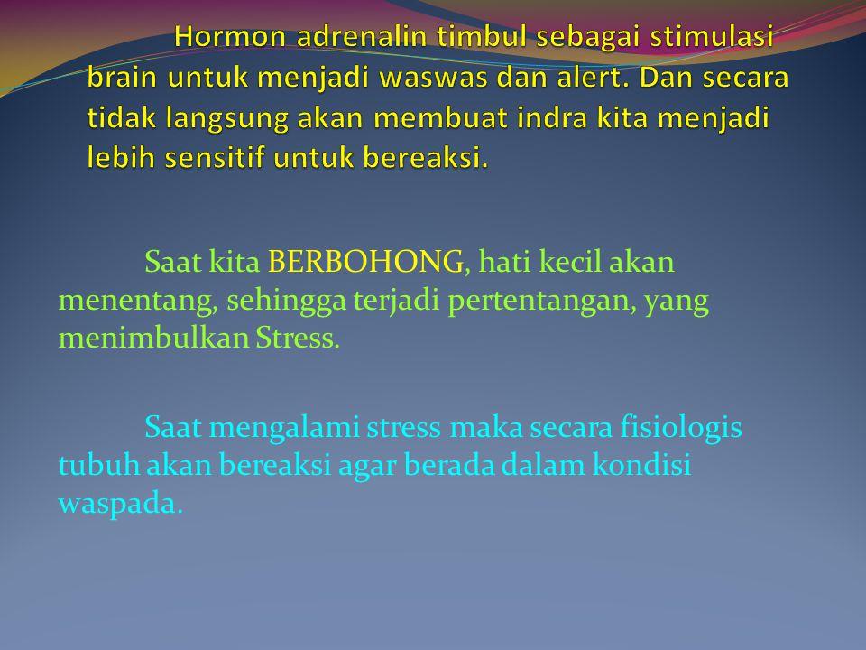 Hormon adrenalin timbul sebagai stimulasi brain untuk menjadi waswas dan alert. Dan secara tidak langsung akan membuat indra kita menjadi lebih sensitif untuk bereaksi.