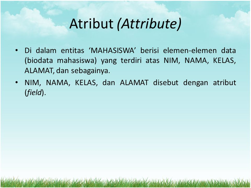 Atribut (Attribute)