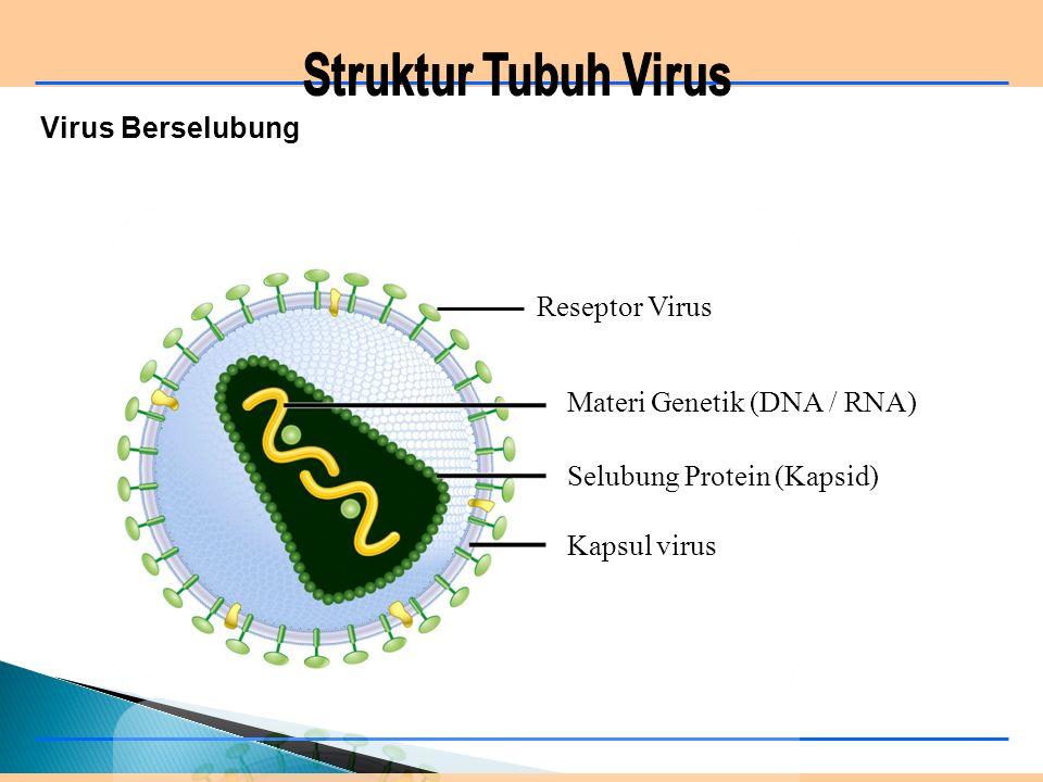 Materi Genetik (DNA / RNA)
