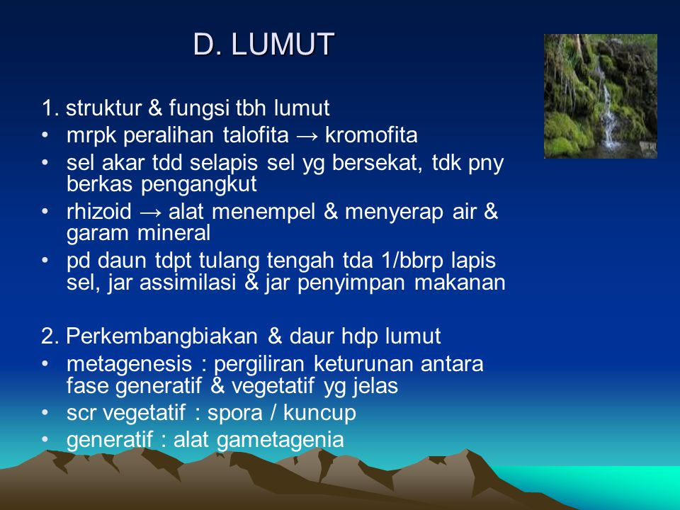D. LUMUT 1. struktur & fungsi tbh lumut