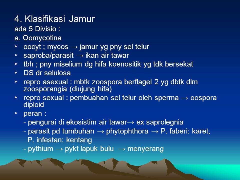 4. Klasifikasi Jamur ada 5 Divisio : a. Oomycotina