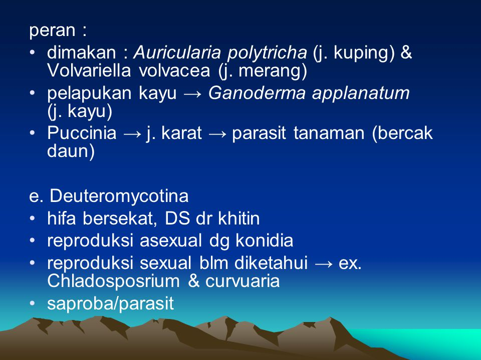 peran : dimakan : Auricularia polytricha (j. kuping) & Volvariella volvacea (j. merang) pelapukan kayu → Ganoderma applanatum (j. kayu)