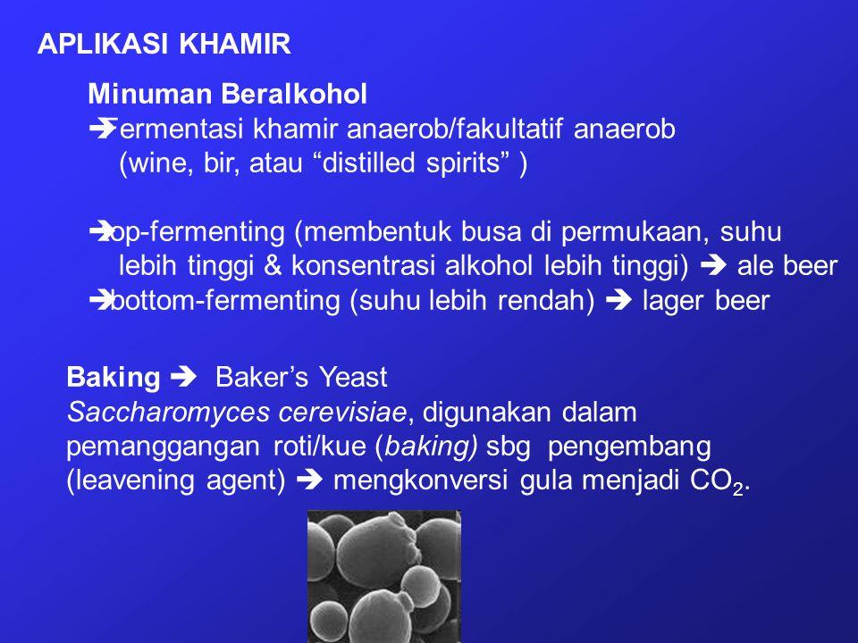 APLIKASI KHAMIR Minuman Beralkohol. Fermentasi khamir anaerob/fakultatif anaerob. (wine, bir, atau distilled spirits )