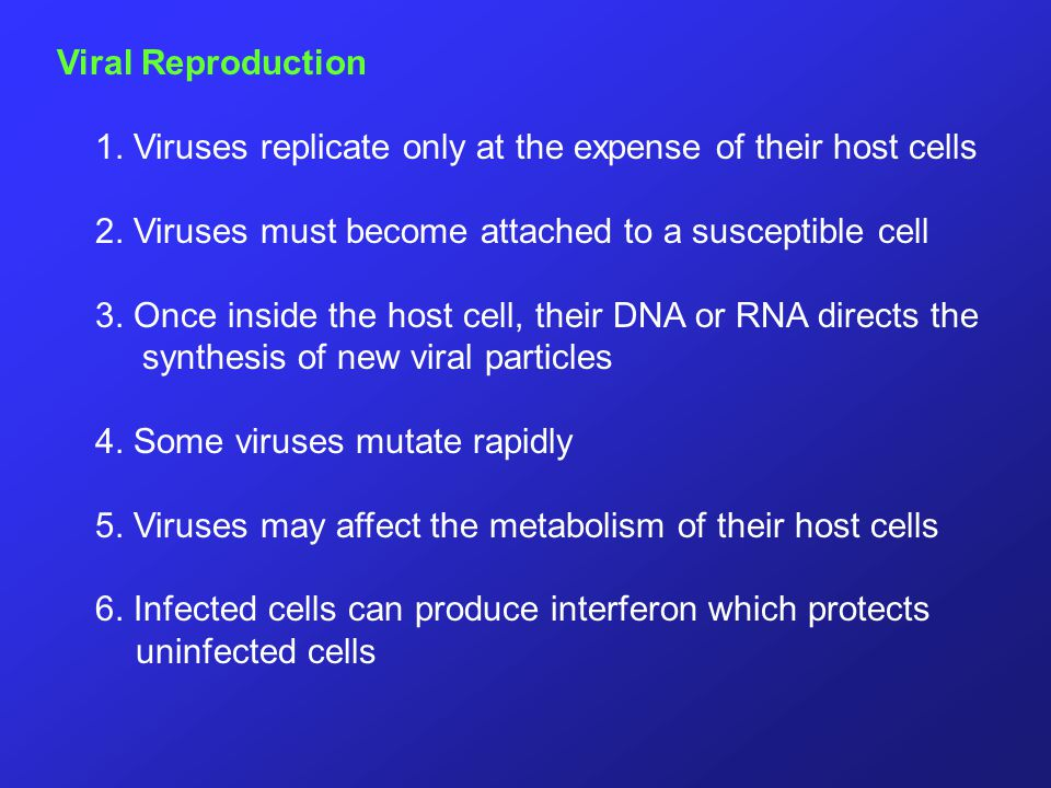 Viral Reproduction 1. Viruses replicate only at the expense of their host cells. 2. Viruses must become attached to a susceptible cell.