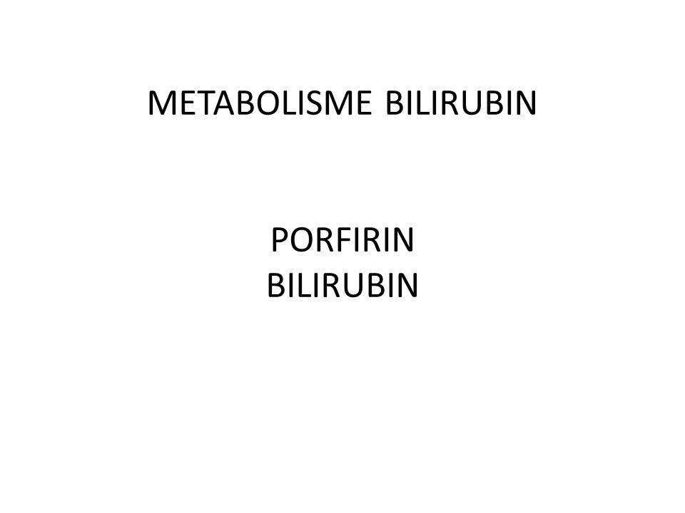 METABOLISME BILIRUBIN PORFIRIN BILIRUBIN