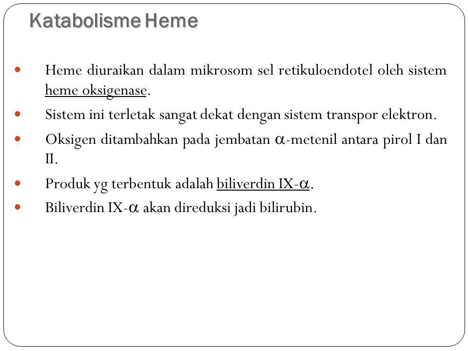 Katabolisme Heme Heme diuraikan dalam mikrosom sel retikuloendotel oleh sistem heme oksigenase.
