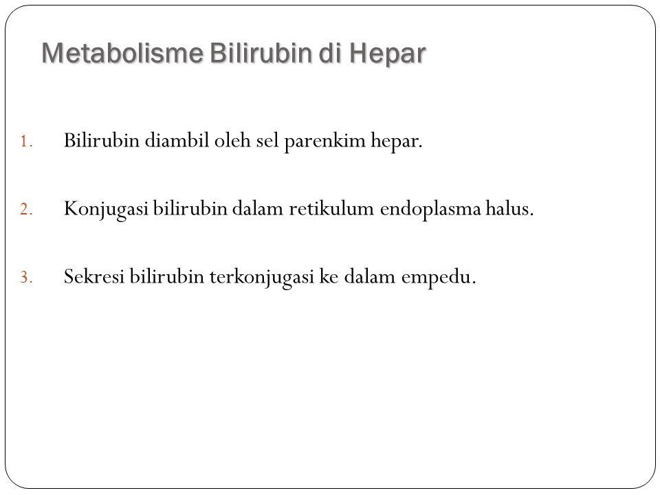 Metabolisme Bilirubin di Hepar
