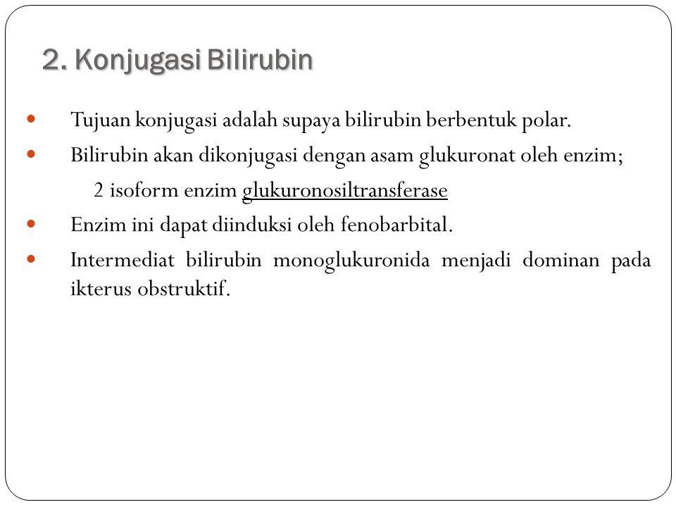 2. Konjugasi Bilirubin Tujuan konjugasi adalah supaya bilirubin berbentuk polar. Bilirubin akan dikonjugasi dengan asam glukuronat oleh enzim;