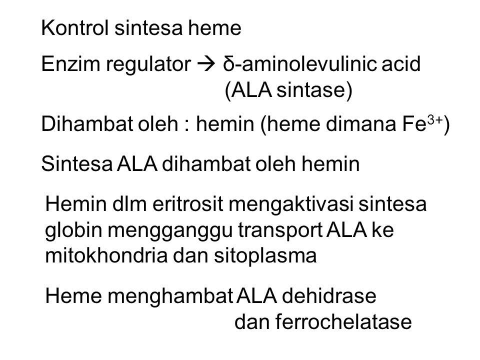 Kontrol sintesa heme Enzim regulator  δ-aminolevulinic acid. (ALA sintase) Dihambat oleh : hemin (heme dimana Fe3+)