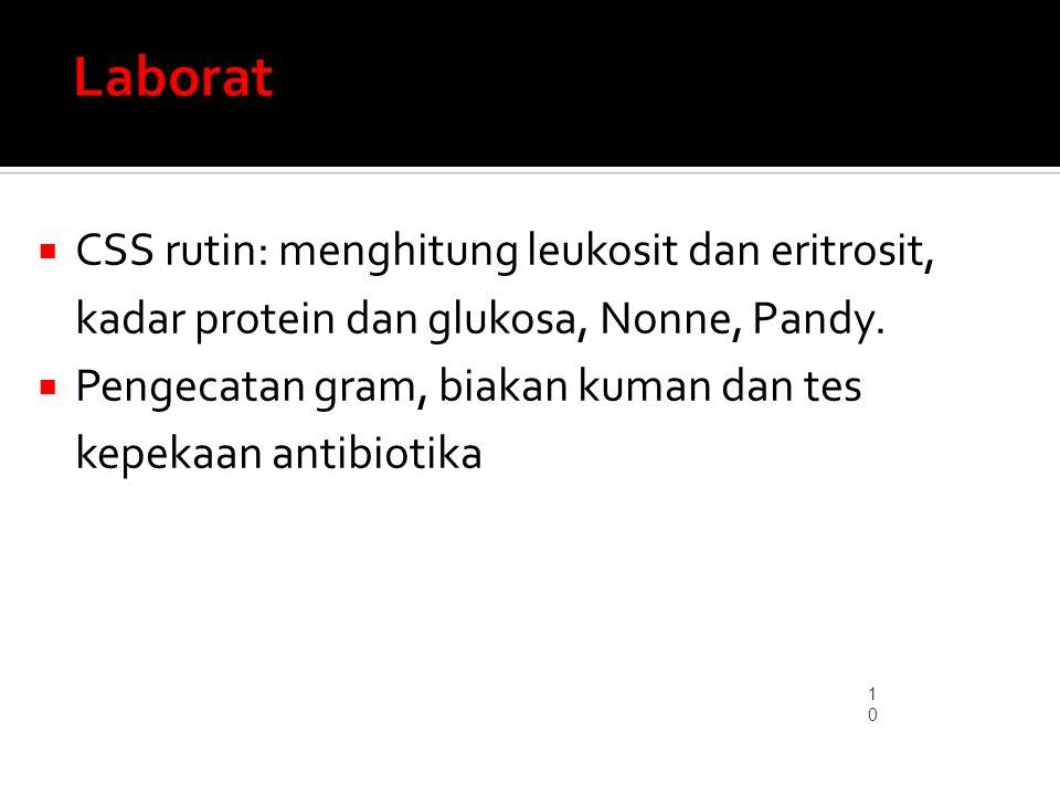 Laborat CSS rutin: menghitung leukosit dan eritrosit, kadar protein dan glukosa, Nonne, Pandy.