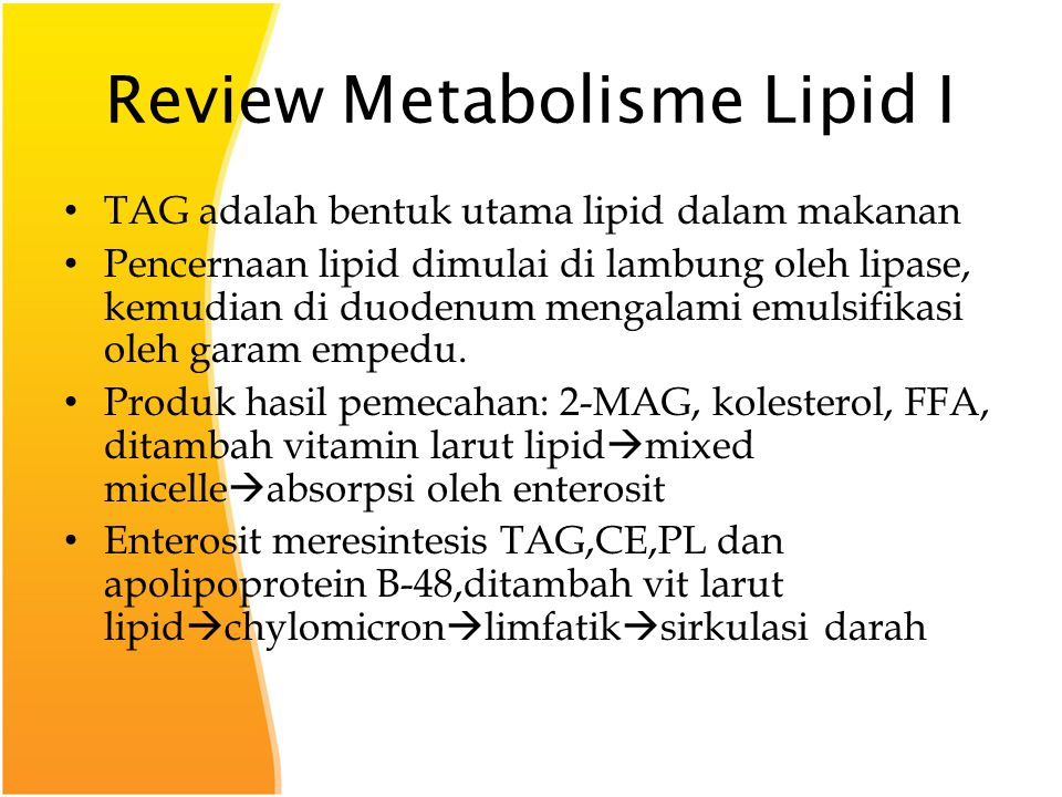 Review Metabolisme Lipid I
