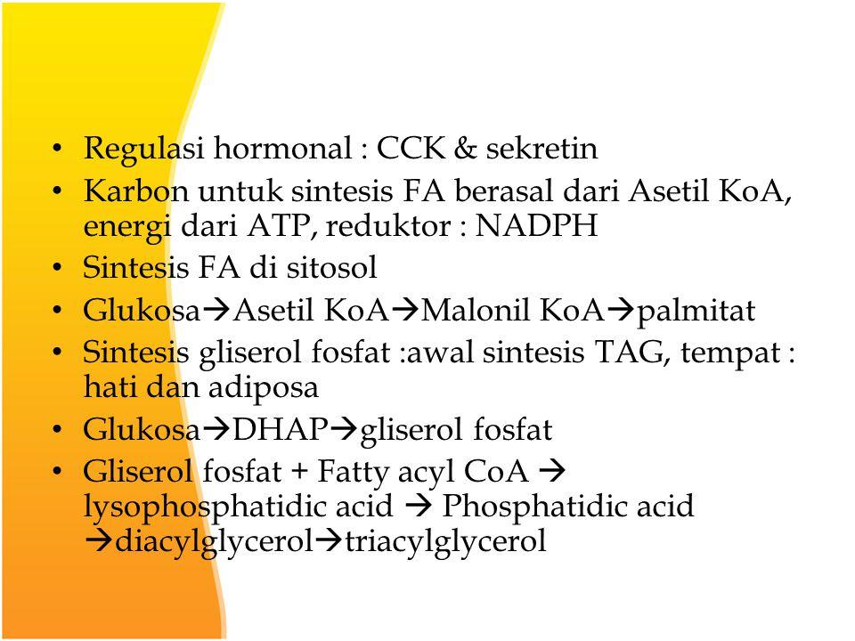 Regulasi hormonal : CCK & sekretin