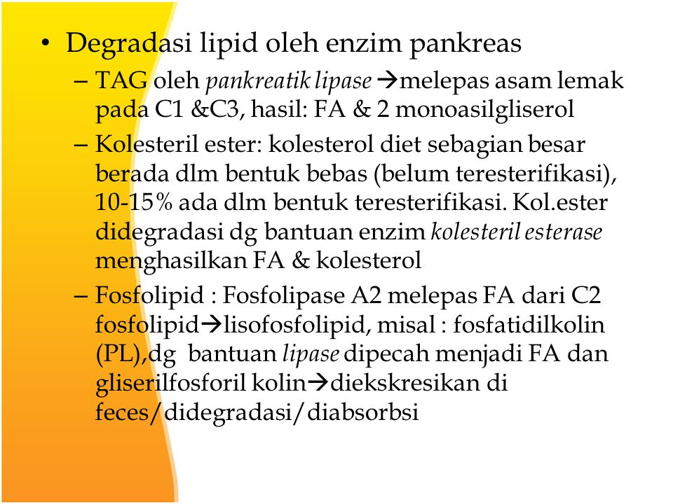 Degradasi lipid oleh enzim pankreas