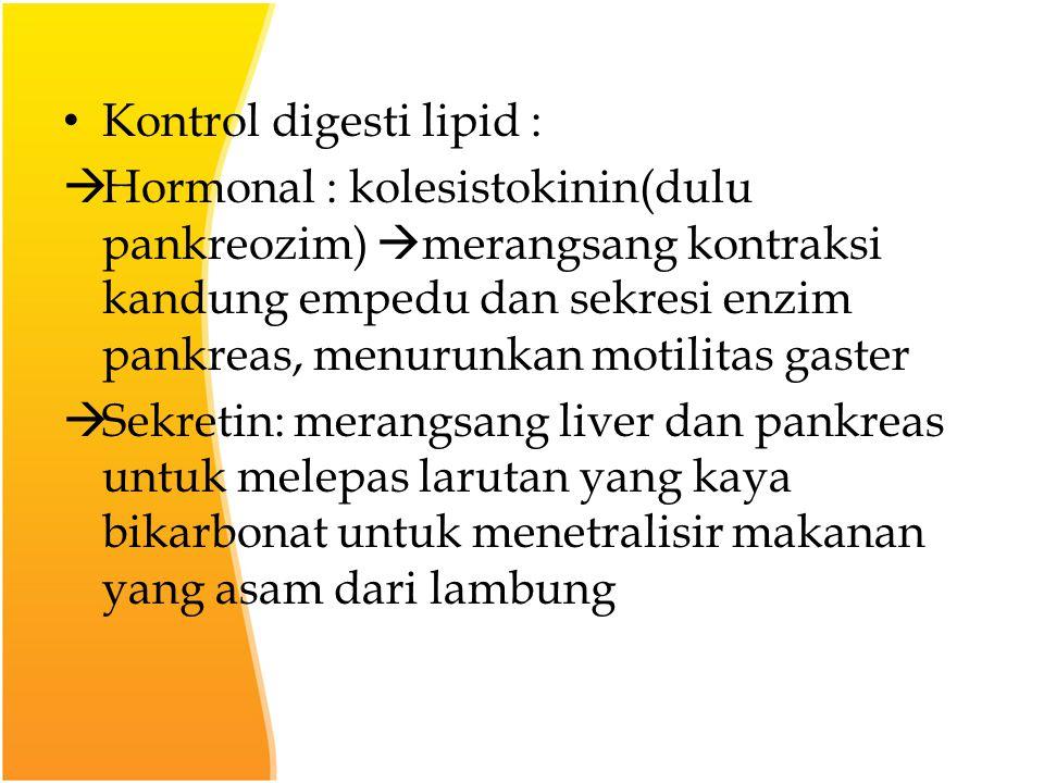 Kontrol digesti lipid :