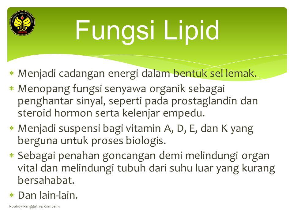 Fungsi Lipid Menjadi cadangan energi dalam bentuk sel lemak.
