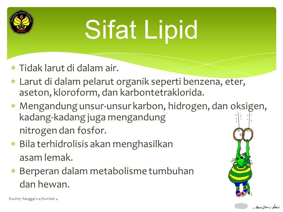 Sifat Lipid Tidak larut di dalam air.