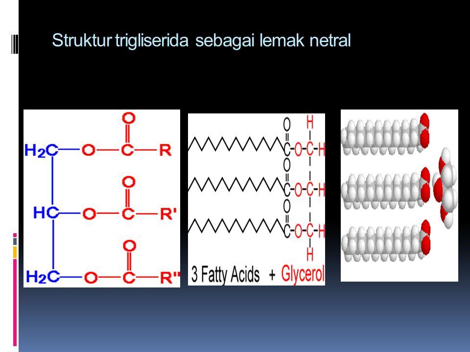 Struktur trigliserida sebagai lemak netral