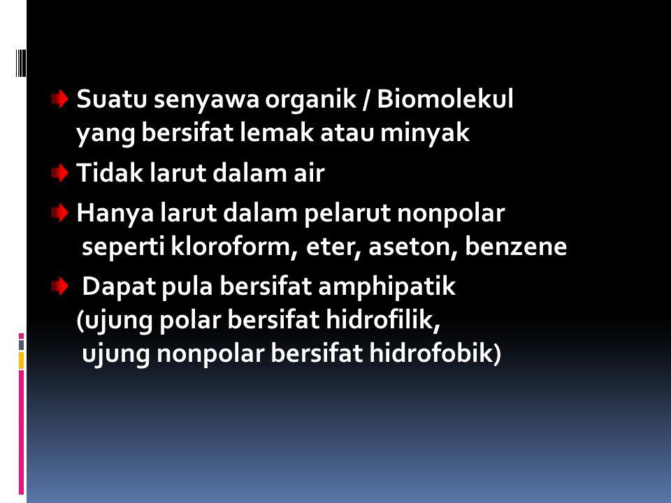 Suatu senyawa organik / Biomolekul yang bersifat lemak atau minyak