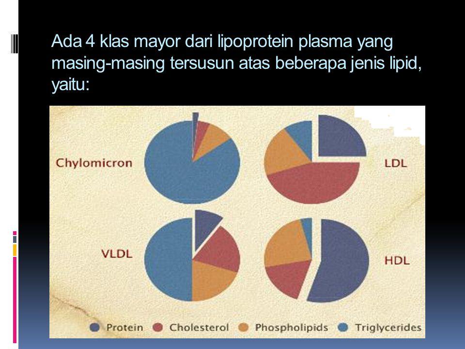 Ada 4 klas mayor dari lipoprotein plasma yang masing-masing tersusun atas beberapa jenis lipid, yaitu: