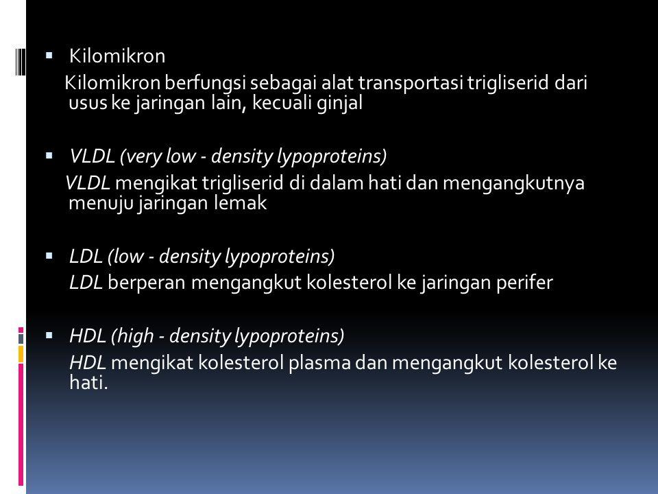 Kilomikron Kilomikron berfungsi sebagai alat transportasi trigliserid dari usus ke jaringan lain, kecuali ginjal.