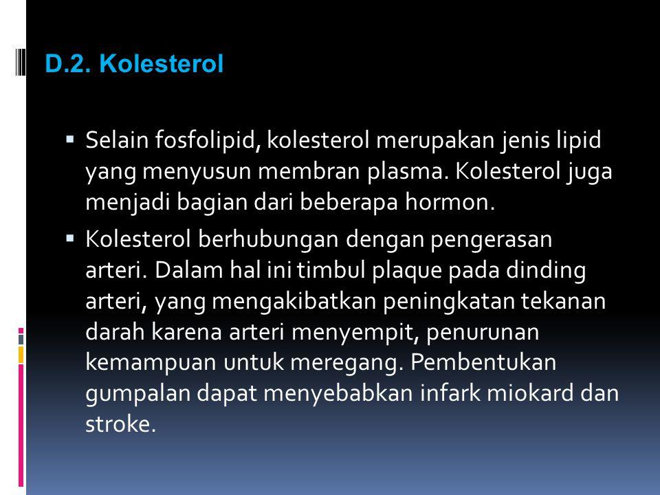 D.2. Kolesterol