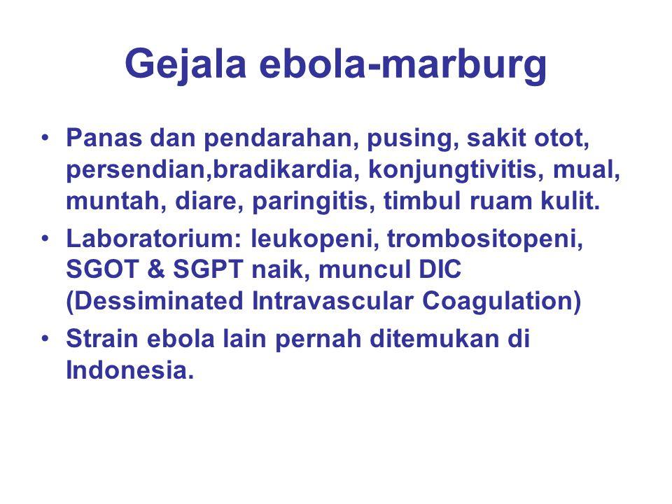 Gejala ebola-marburg