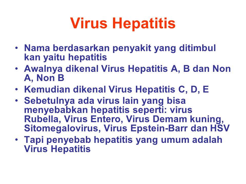 Virus Hepatitis Nama berdasarkan penyakit yang ditimbul kan yaitu hepatitis. Awalnya dikenal Virus Hepatitis A, B dan Non A, Non B.