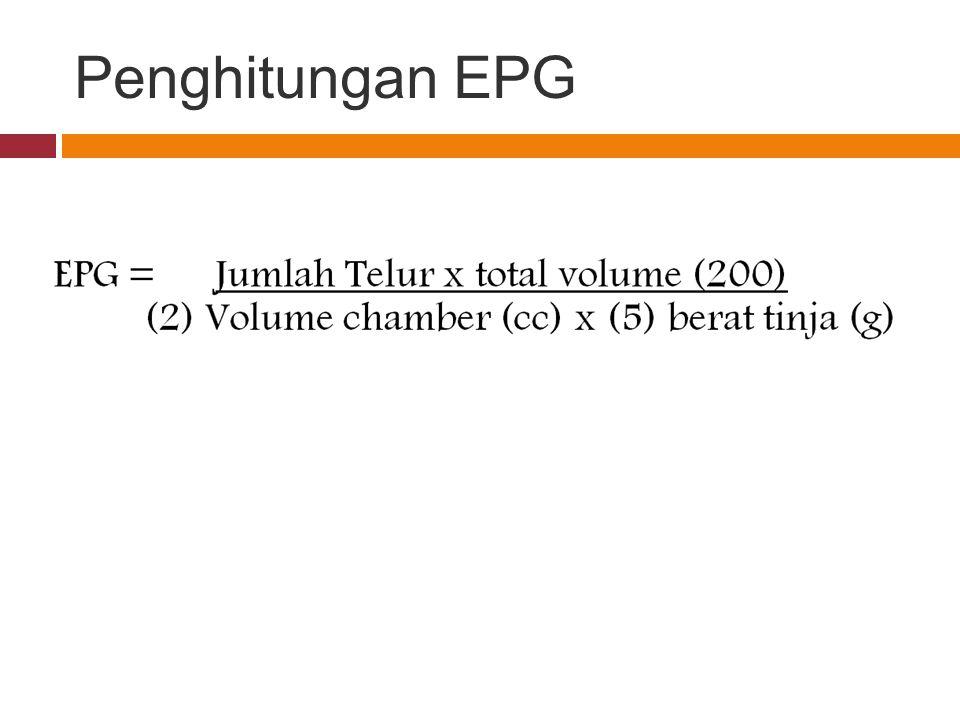 Penghitungan EPG