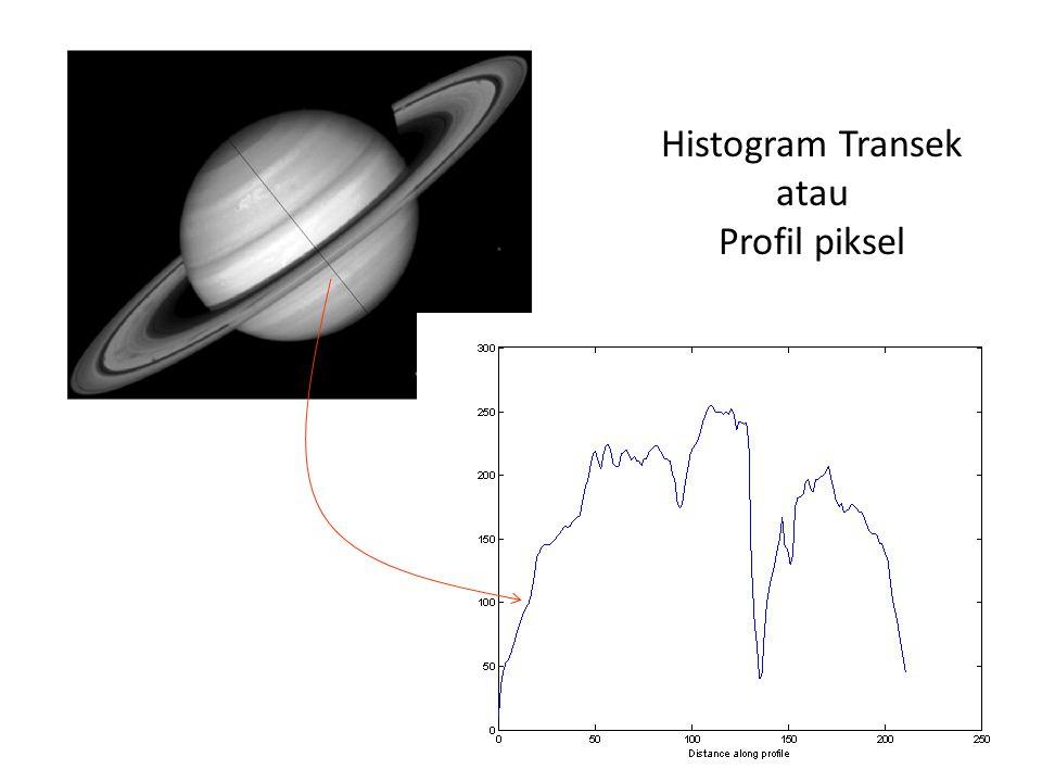 Histogram Transek atau Profil piksel