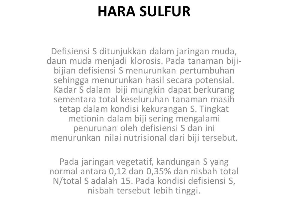 HARA SULFUR