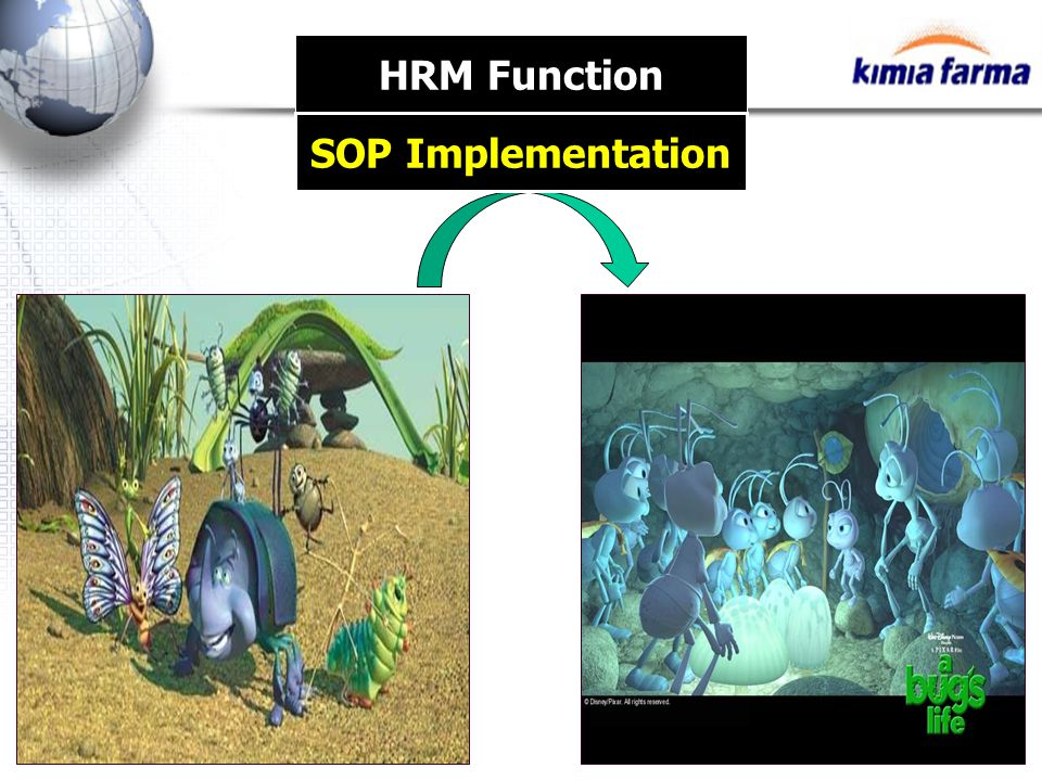 HRM Function SOP Implementation